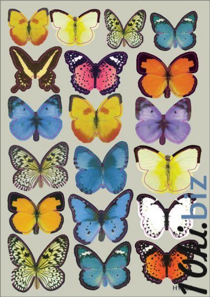Интерьерная наклейка на стену бабочки 3д 3D разноцветные (набор h1-002) - Интерьерные наклейки в магазине Одессы