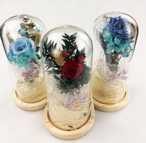 Фото Подарки, Подарки для женщин Живая роза в стеклянной колбе