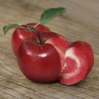 «Redlove ЭРА» —Яблоня красномясая