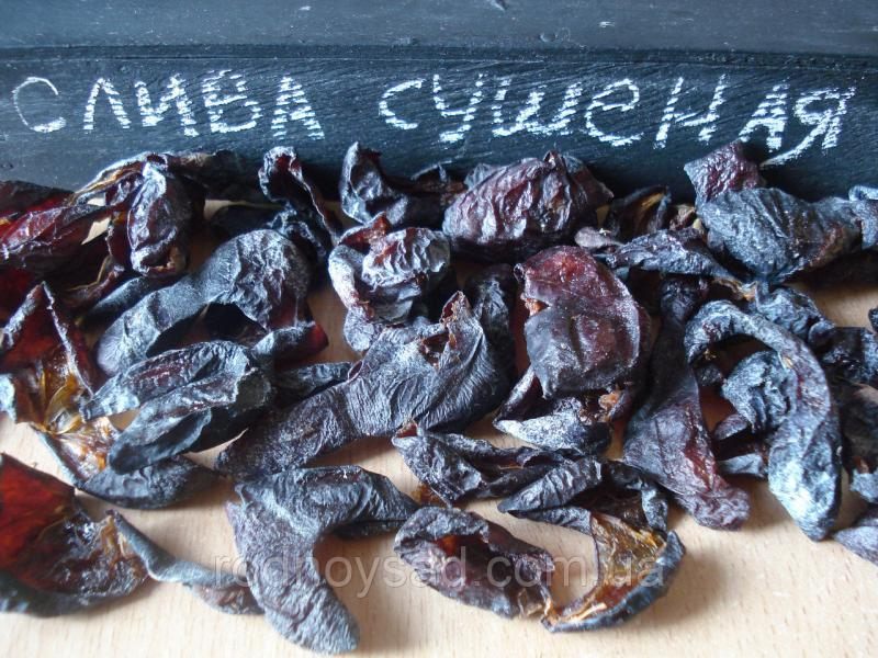 Слива сушеная 50 грамм домашняя натуральный вяленый сухофрукт