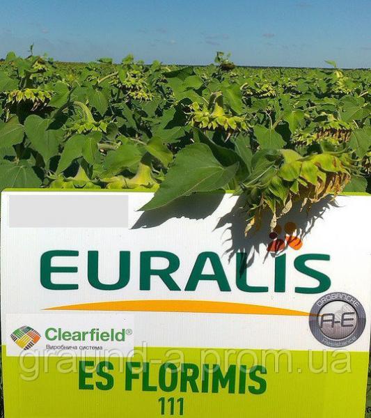 Семена подсолнечника ЕС Флоримис СЛ