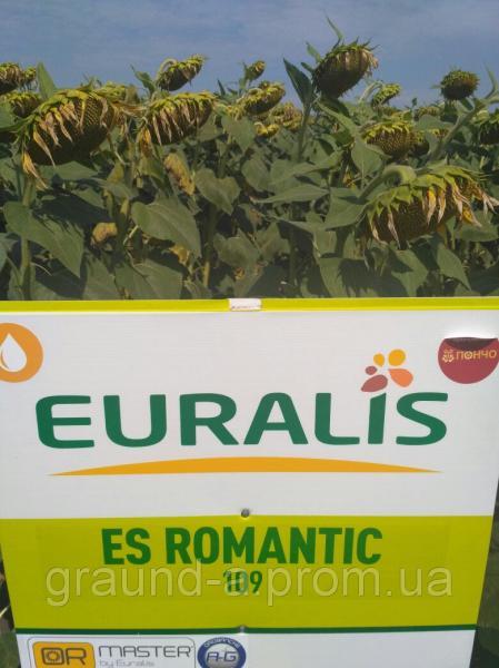 Семена подсолнечника ЕС Романтик