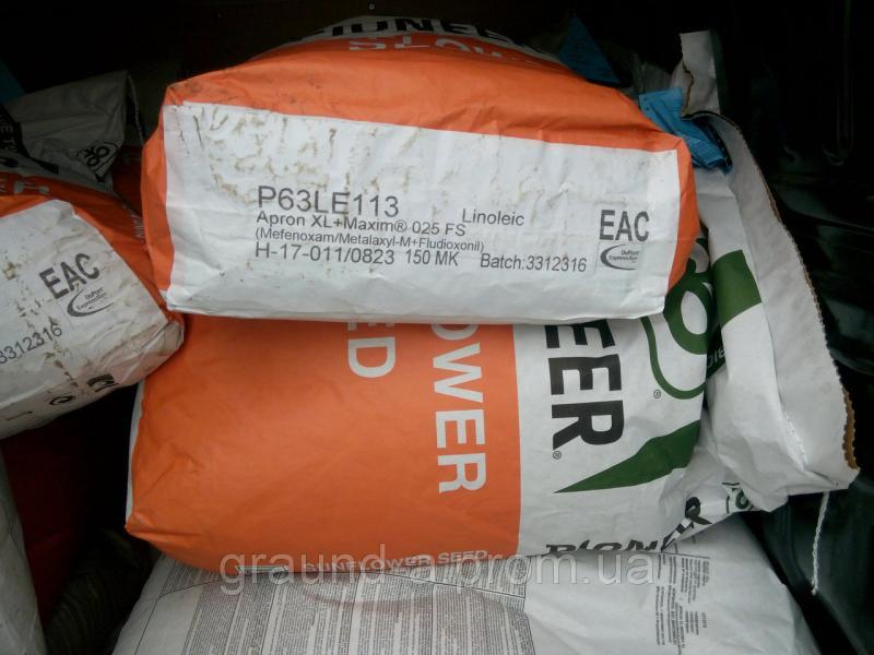 Семена подсолнечника P63LE113