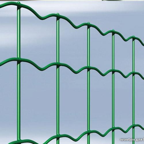 Сетка сварная Заграда Классик 2,0*10