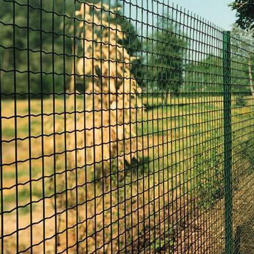 Сетка сварная Заграда Премиум 1,5*25
