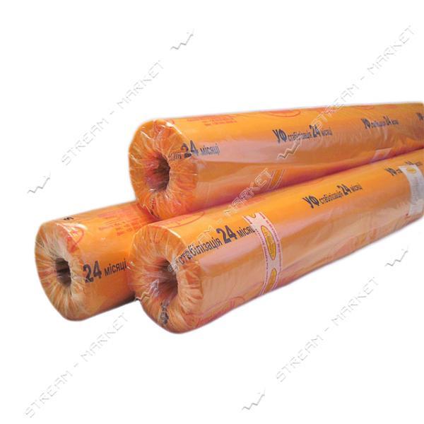 Пленка тепличная УФ-стабилизированная СОЮЗ 36 мес 200 мкм 3х50м