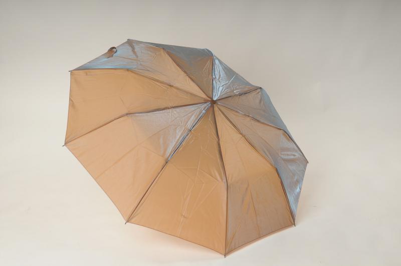 Женский зонт Zest 23943-4 Spesial (Искристый)