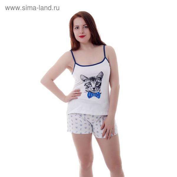 Пижама женская (топ, шорты) W SC101, принт Коты, р-р 48