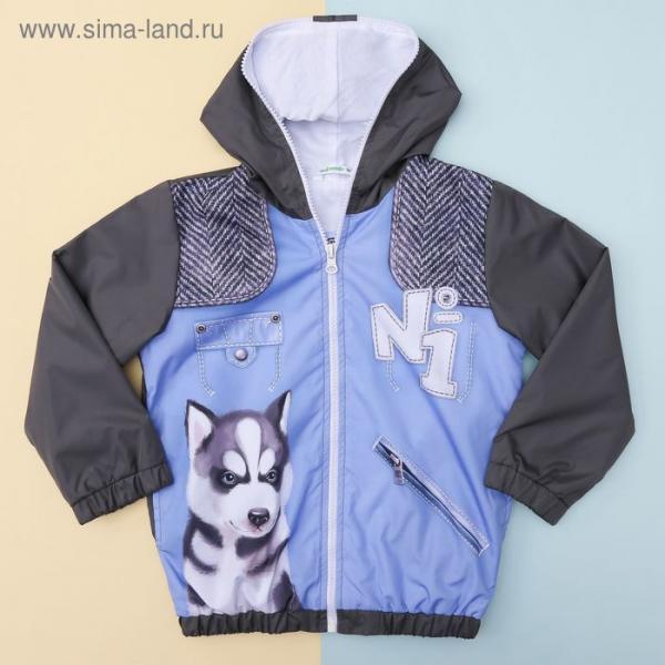 """Куртка для мальчика Collorista """"Город"""", рост 74-80 см (26), 9-12 мес + рюкзак"""