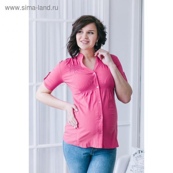 Блузка для беременных 2242, цвет малина, размер 52, рост 170