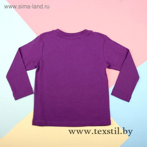 Фото Одежда и обувь, Женская одежда, Джемперы, толстовки Джемпер для мальчика, рост 104 см, цвет фиолетовый 170217