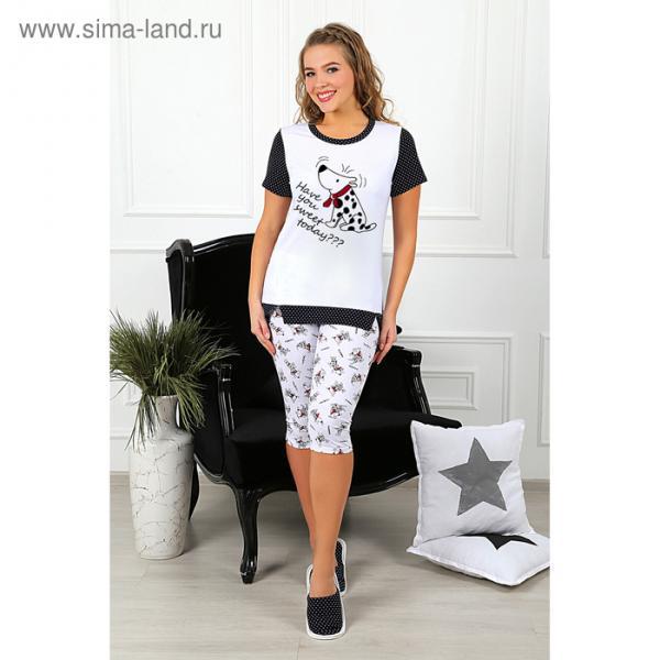 Пижама женская (футболка, бриджи) Далматинец-3 цвет малиновый, р-р 46