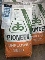 Семена подсолнечника P64LE25