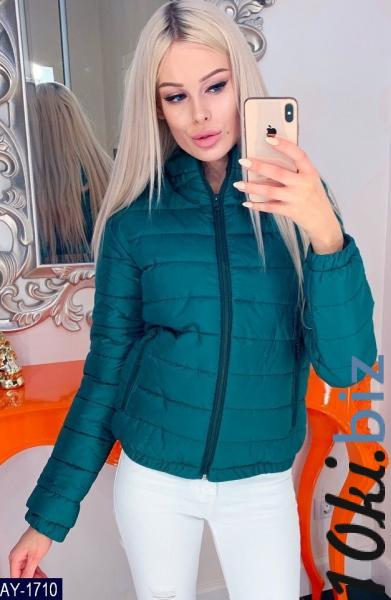 Куртка купить в Ивано-Франковске - Женские костюмы