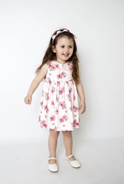 Плаття ПЛ-1719 Рожеви троянди