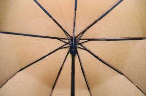 Фото  Женский зонт Max ( полуавтомат ) арт. 427-04
