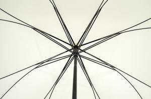 Фото  Женский зонт трость бежевый Elephant ( механика ) арт. 5
