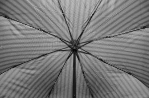 Фото  Модный мужской зонт Три Слона ( полный автомат ) арт. 750-04