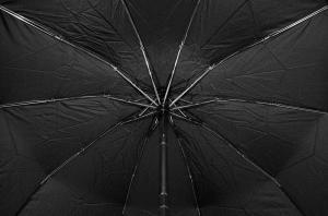 Фото  Мужской зонт Elephant ( полный автомат ) арт. 10