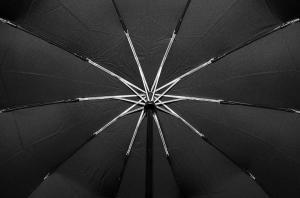 Фото  Мужской зонт Parachase ( полный автомат ) арт. 3229