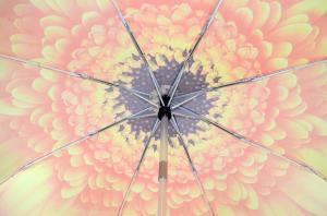 Фото  Оранжевый женский зонт Три Слона ( полный автомат ) арт. 115D-02