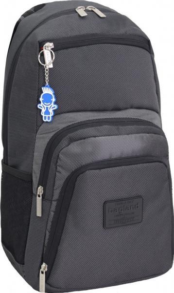 Украина Рюкзак для ноутбука Bagland Freestyle 21 л. черный /серебро (00119169)
