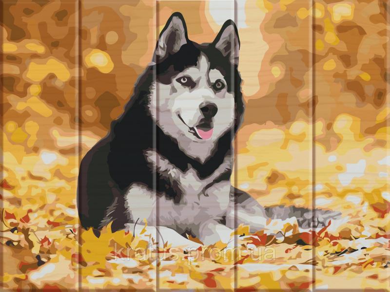 "ASW 012 ""Хаски"" Картина по номерам на дереве 30х40 см"