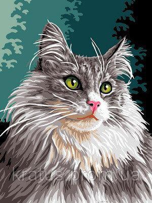 """VK 177 """"Сибирская кошка"""" Роспись по номерам на холсте 40x30см"""