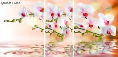 Фото Обеденные столы Столы раздвижные с фотопечатью стекло (ВВР)