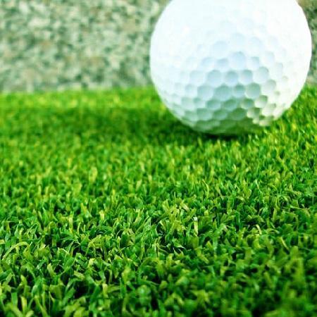 Искусственная трава Оротекс Гольф