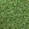 Искусственная трава Оротекс Аркадия