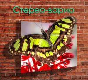 Фото  Стерео-варио плакат, постер, афиша