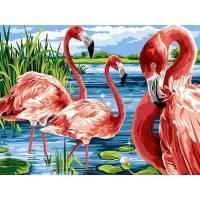 Фото Картины на холсте по номерам, Животные. Птицы. Рыбы... VK 207