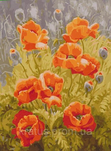 Фото Картины на холсте по номерам, Букеты, Цветы, Натюрморты MS 023 Полевые маки Роспись по номерам на холсте 40х50см