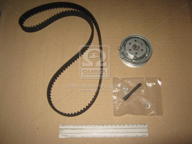 Ремень ГРМ с роликами, комплект VAG (пр-во SKF)