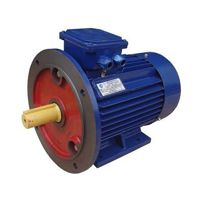 Электродвигатель АИР 100 S2, АИР 100 L2, АИР 100 S4, АИР 100 L4, АИР 100 L6, АИР 100 L8