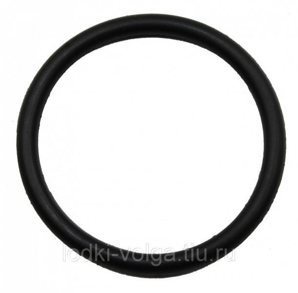 20F-06.00.00.09 О-образное кольцо