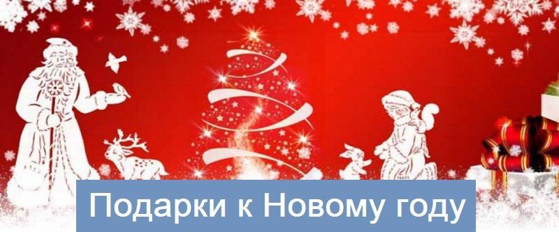 Подарок на новый год дом подарков