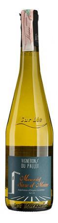 Вино белое сухое Muscadet Sevre et Maine, Франция - Долина Луары