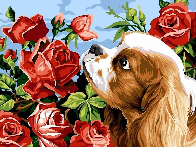 """VK 106 """"Коккер спаниель и розы"""" Картина по номерам на холсте 40x30см"""