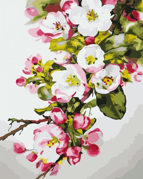Фото Картины на холсте по номерам, Букеты, Цветы, Натюрморты AS 0664 Вишнёвый цвет Картина по номерам на холсте Art Story 40x50см