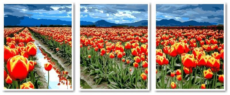 Фото Картины на холсте по номерам, Триптих, диптих VPT 042 Поле тюльпанов Роспись по номерам на холсте 50х120см