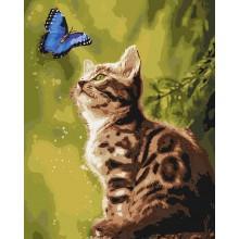 Фото Картины на холсте по номерам, Животные. Птицы. Рыбы... KH 4150 Загадочная бабочка Картина по номерам на холсте 40х50см