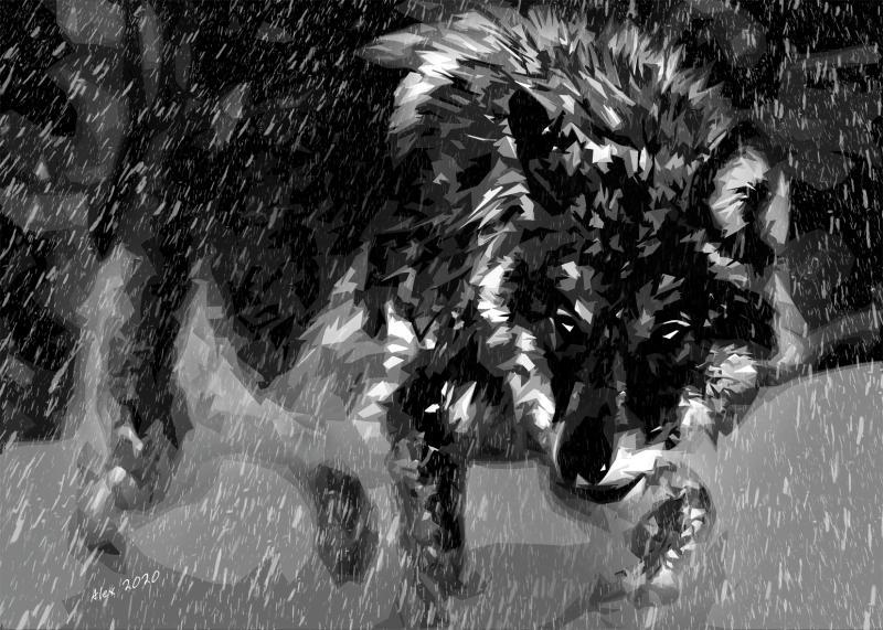 "Картина Волк ""Метель"""