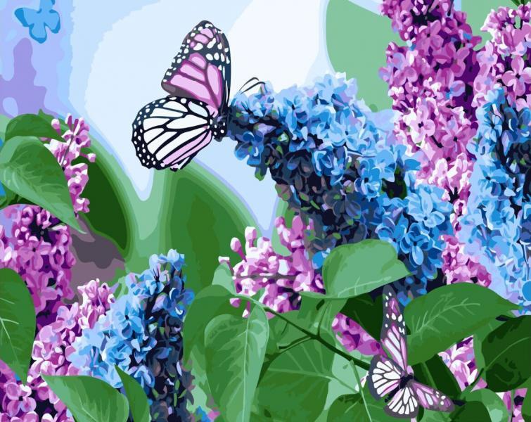 Фото Картины на холсте по номерам, Животные. Птицы. Рыбы... KGX 4931