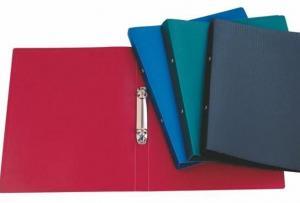 Фото Папки, файлы, планшеты, портфели, сумки (ЦЕНЫ БЕЗ НДС), Папки на кольцах Папка с кольцами LITE А4, 2 кольца, 21 мм, пластик 500 мкм, ассорти