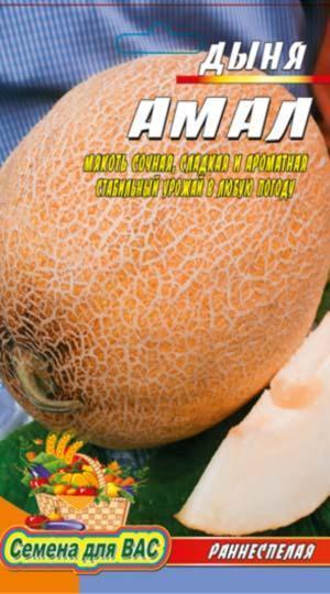 Дыня Амал пакет 20 семян
