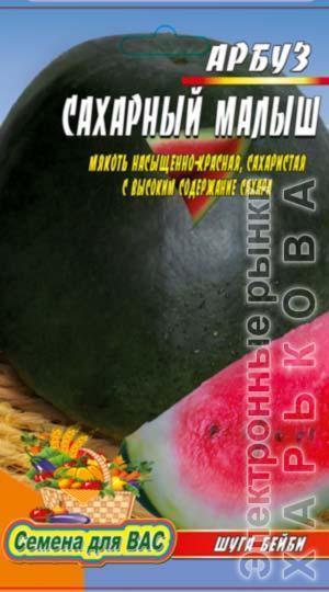 Арбуз Сахарный малыш (Шуга бэйби) пакет 20 семян - Семена, саженцы и рассада плодово-ягодных культур на рынке Барабашова
