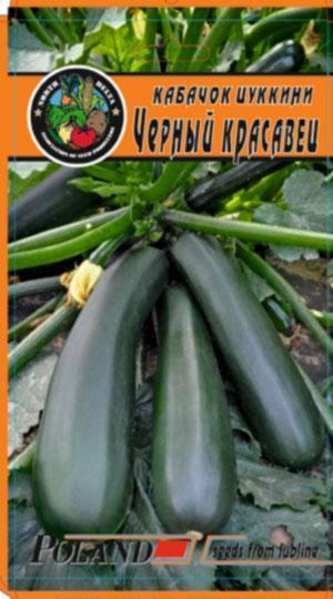 Кабачок -цуккини Черный красавец пакет 120 семян