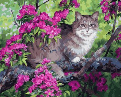 Фото Картины на холсте по номерам, Животные. Птицы. Рыбы... VP883 Картина по номерам 40х50см